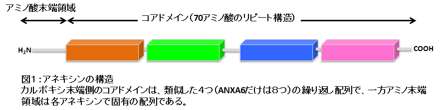 res2014_fig1